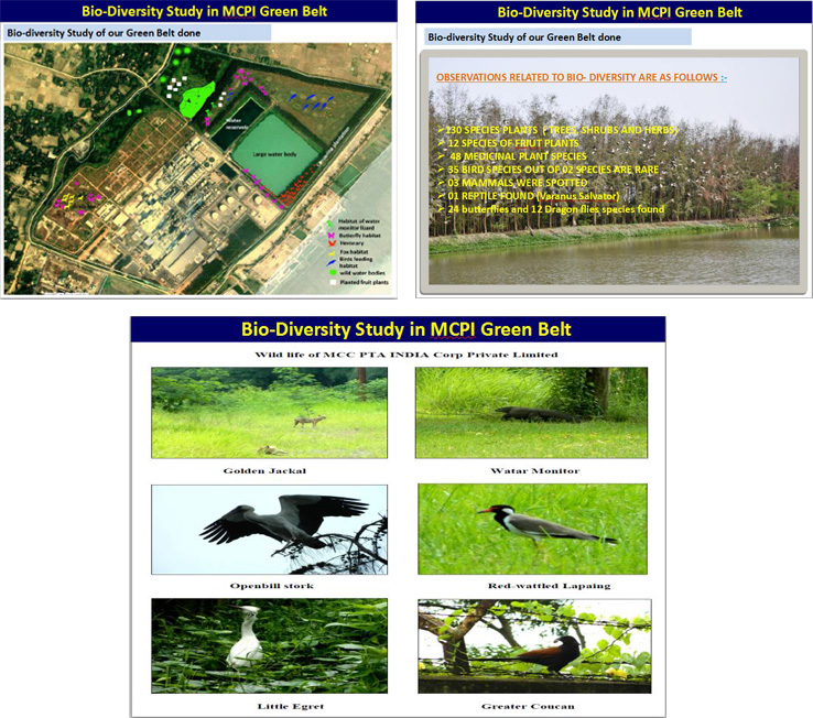 bio-diversity-study-of-our-green-belt-done